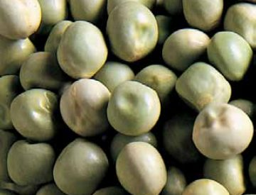 <strong>DRY GREEN PEAS 'COLUMBIA'</strong>