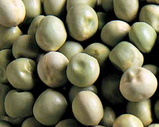 Dry Green Peas _Columbia_